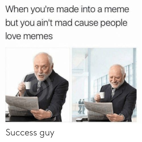 Love, Meme, and Memes: When you're made into a meme  but you ain't mad cause people  love memes Success guy