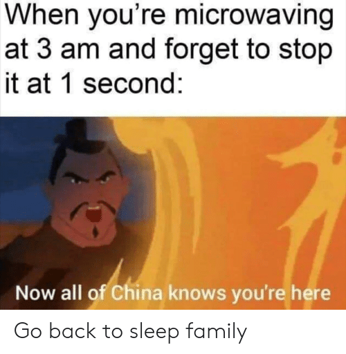 Family, China, and Sleep: When you're microwaving  at 3 am and forget to stop  it at 1 second:  Now all of China knows you're here Go back to sleep family