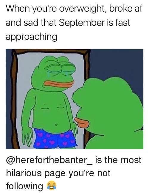 Af, Memes, and Broke AF: When you're overweight, broke af  and sad that September is fast  approaching @hereforthebanter_ is the most hilarious page you're not following 😂