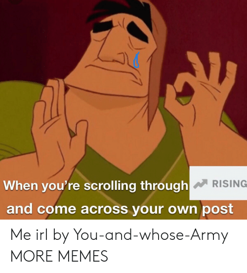 Dank, Memes, and Target: When you're scrolling through  RISING  and come across your own post Me irl by You-and-whose-Army MORE MEMES