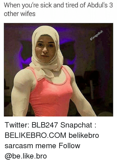 Be Like, Meme, and Memes: When you're sick and tired of Abdul's 3  other wifes Twitter: BLB247 Snapchat : BELIKEBRO.COM belikebro sarcasm meme Follow @be.like.bro