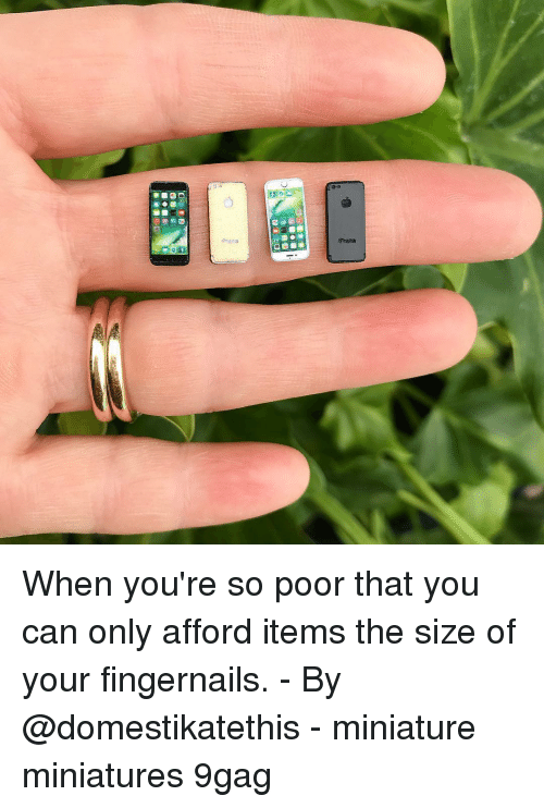 9gag, Memes, and 🤖: When you're so poor that you can only afford items the size of your fingernails. - By @domestikatethis - miniature miniatures 9gag