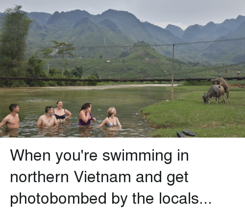 Funny, Vietnam, and Swimming