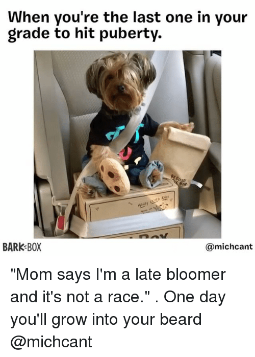 "Beard, Memes, and Puberty: When you're the last one in your  grade to hit puberty.  AED AND  BARK BOX  michcant ""Mom says I'm a late bloomer and it's not a race."" . One day you'll grow into your beard @michcant"