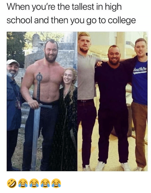 College, School, and Girl Memes: When you're the tallest in high  school and then you go to college 🤣😂😂😂😂