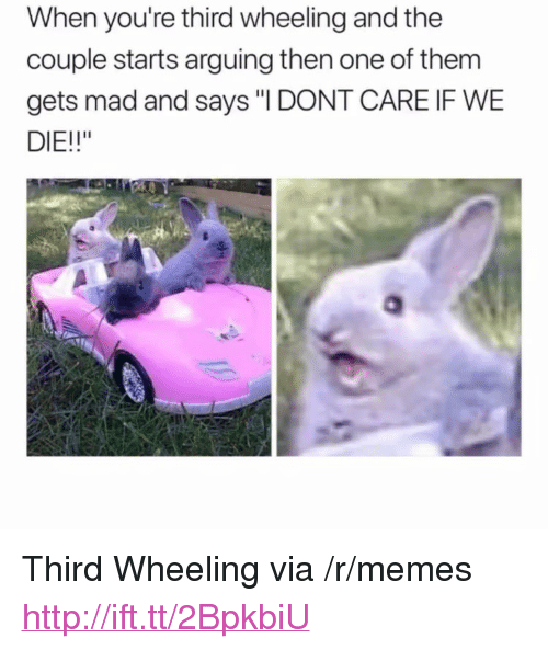 """Wheeling: When you're third wheeling and the  couple starts arguing then one of them  gets mad and says """"I DONT CARE IF WE  DIE!!"""" <p>Third Wheeling via /r/memes <a href=""""http://ift.tt/2BpkbiU"""">http://ift.tt/2BpkbiU</a></p>"""