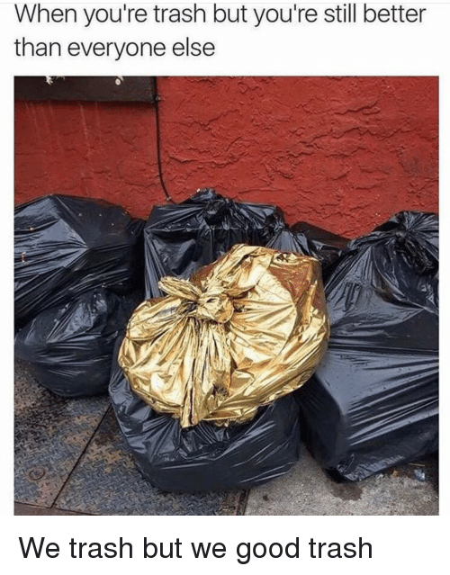Better Than Everyone Else: When you're trash but you're still better  than everyone else We trash but we good trash