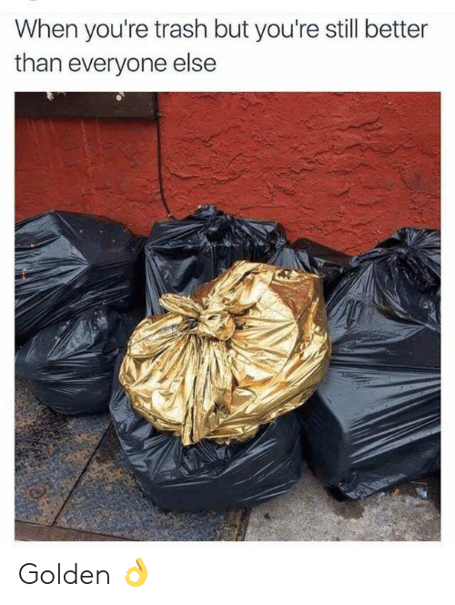 Better Than Everyone Else: When you're trash but you're still better  than everyone else Golden 👌
