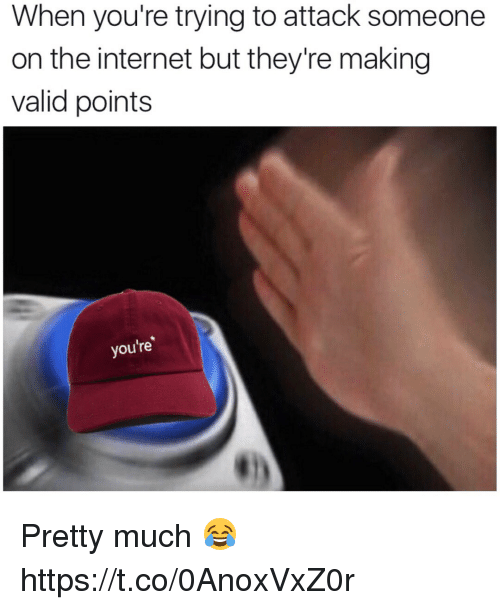 Internet, Memes, and 🤖: When you're trying to attack someone  on the internet but they're making  valid points  you're Pretty much 😂 https://t.co/0AnoxVxZ0r