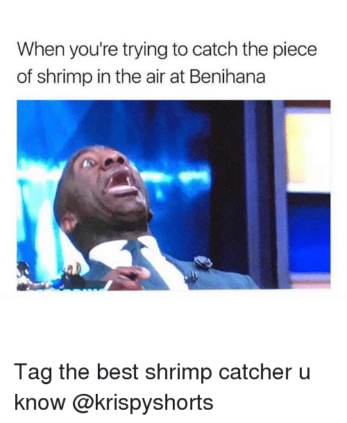Ironic, Best, and Air: When you're trying to catch the piece  of shrimp in the air at Benihana Tag the best shrimp catcher u know @krispyshorts