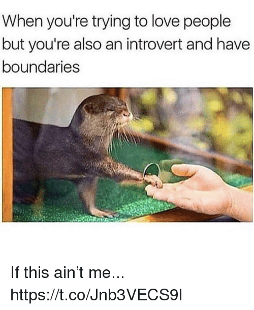 Funny, Introvert, and Love: When you're trying to love people  but you're also an introvert and have  boundaries If this ain't me... https://t.co/Jnb3VECS9l