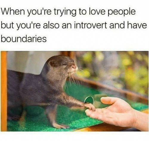 Introvert, Love, and Youre: When you're trying to love people  but you're also an introvert and have  boundaries