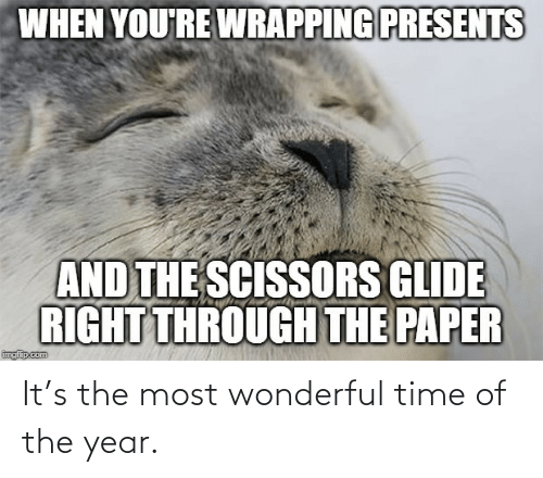presents: WHEN YOU'RE WRAPPING PRESENTS  AND THE SCISSORS GLIDE  RIGHT THROUGH THE PAPER  ingip.com It's the most wonderful time of the year.