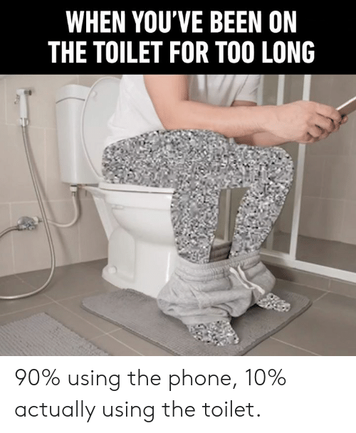 On The Toilet: WHEN YOU'VE BEEN ON  THE TOILET FOR TOO LONG 90% using the phone, 10% actually using the toilet.