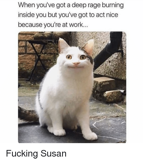 Fucking, Work, and Girl Memes: When you've got a deep rage burning  inside you but you've got to act nice  because you're at work... Fucking Susan