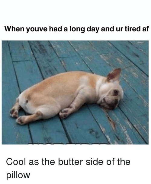 Af, Memes, and Cool: When youve had a long day and ur tired af Cool as the butter side of the pillow