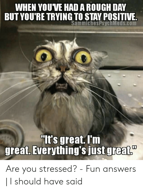Funny Stress Memes: WHEN YOUVE HAD A ROUGH DAY  BUTYOU'RE TRYING TO STAY POSITIVE.  SammichesPsychMeds.com  It's great.I'm  greaL, EVerything's just greaL. Are you stressed? - Fun answers | I should have said