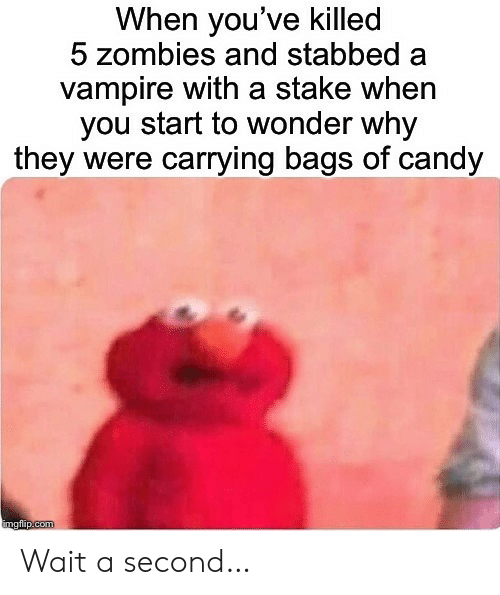 bags: When you've killed  5 zombies and stabbed  vampire with a stake when  you start to wonder why  they were carrying bags of candy  imgflip.com Wait a second…