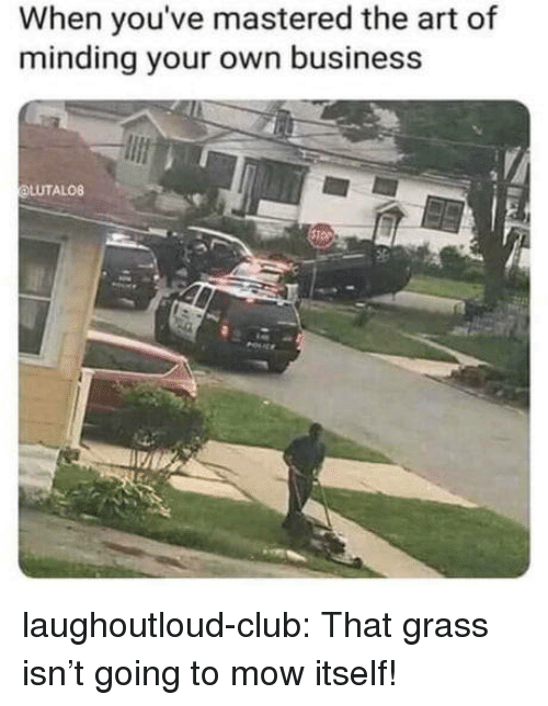 Club, Tumblr, and Blog: When you've mastered the art of  minding your own business  LUTALO8 laughoutloud-club:  That grass isn't going to mow itself!