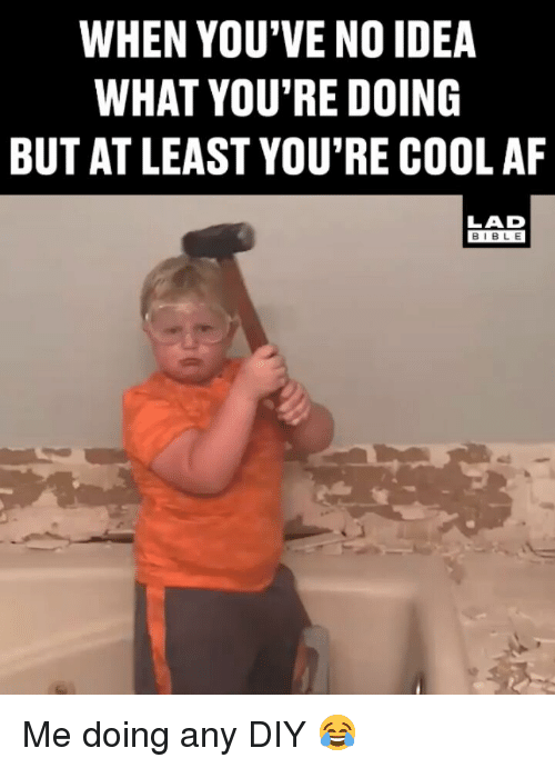 Af, Memes, and Bible: WHEN YOU'VE NO IDEA  WHAT YOU'RE DOING  BUT AT LEAST YOU'RE COOL AF  LAD  BIBLE Me doing any DIY 😂