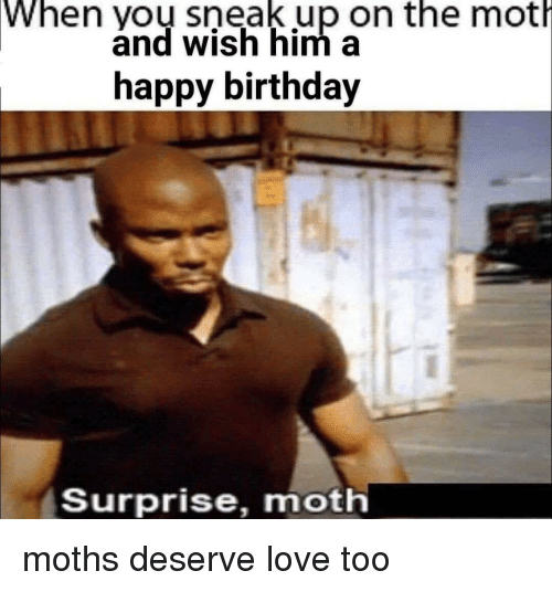 Birthday Love And Happy When Yoy Sneak Up On The Moth