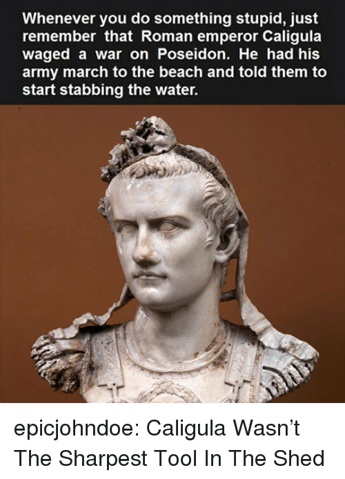 Tumblr, Army, and Beach: Whenever you do something stupid, just  remember that Roman emperor Caligula  waged a war on Poseidon. He had his  army march to the beach and told them to  start stabbing the water. epicjohndoe:  Caligula Wasn't The Sharpest Tool In The Shed