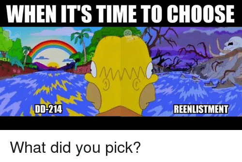 Memes, Time, and 🤖: WHENIT'S TIME TO CHOOSE  DD-214  REENLISTMENT What did you pick?