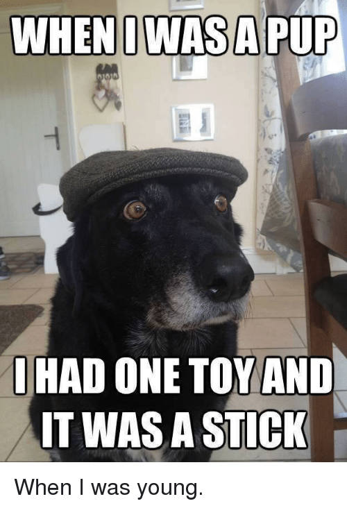 Pup, Stick, and One: WHENO WASA  PUP  HAD ONE TOY AND  IT WAS A STICK When I was young.