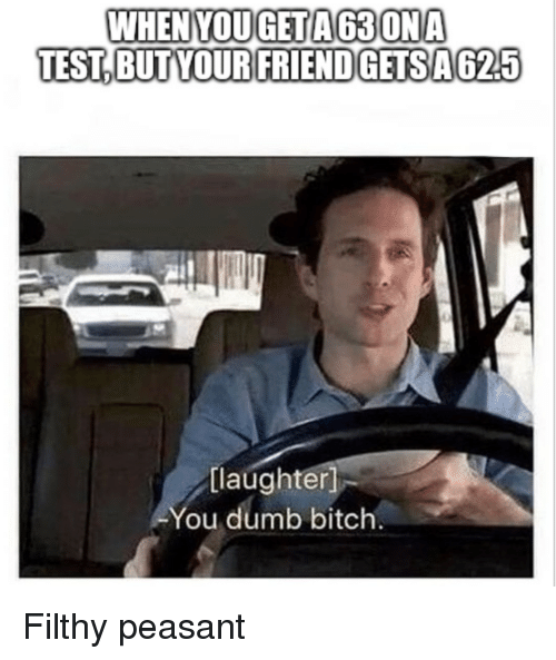 Bitch, Dumb, and Test: WHENYOUGETA63ONA  TEST,BUT YOURFRIENDGETSA625  [laughter  You dumb bitch. Filthy peasant