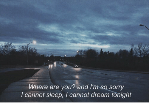 Sorry, Sleep, and Dream: Where are you? and I'm-so sorry  I cannot sleep, I cannot dream tonight