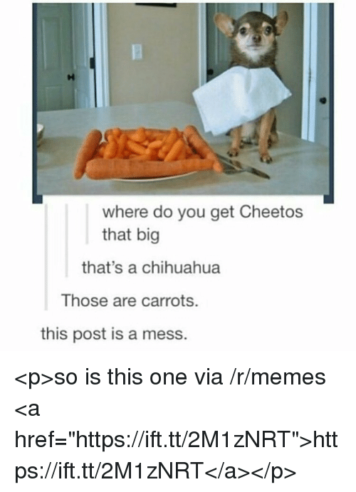 """Cheetos, Chihuahua, and Memes: where do you get Cheetos  that big  that's a chihuahua  Those are carrots.  this post is a mess. <p>so is this one via /r/memes <a href=""""https://ift.tt/2M1zNRT"""">https://ift.tt/2M1zNRT</a></p>"""