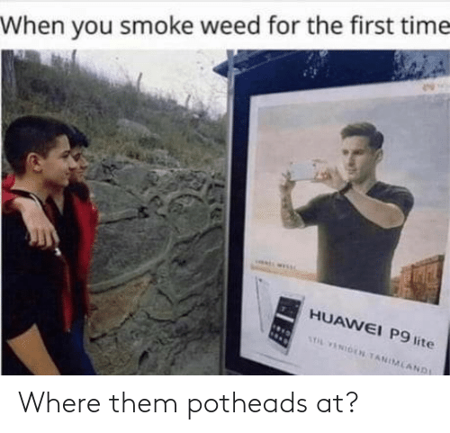Where: Where them potheads at?