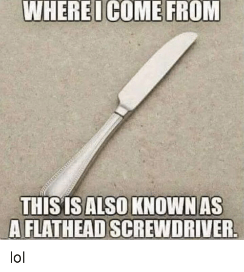 Lol, Memes, and 🤖: WHEREICOME FROM  THISIS ALSO KNOWNAS  A FLATHEAD SCREWDRIVER lol