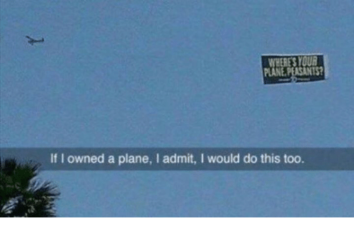 Dank, 🤖, and Plane: WHERE'S YOUR  PLANE PEASANTS  If I owned a plane, I admit, I would do this too.