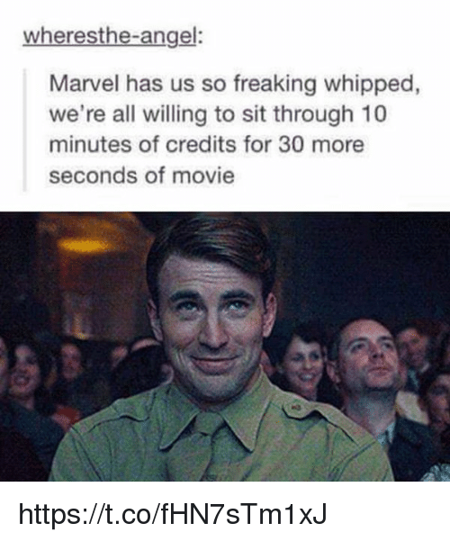 Memes, Angel, and Marvel: wheresthe-angel:  Marvel has us so freaking whipped  we're all willing to sit through 10  minutes of credits for 30 more  seconds of movie https://t.co/fHN7sTm1xJ