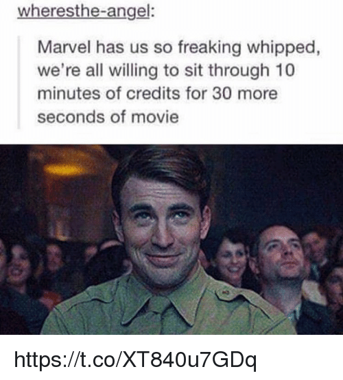 Memes, Angel, and Marvel: wheresthe-angel:  Marvel has us so freaking whipped,  we're all willing to sit through 10  minutes of credits for 30 more  seconds of movie https://t.co/XT840u7GDq