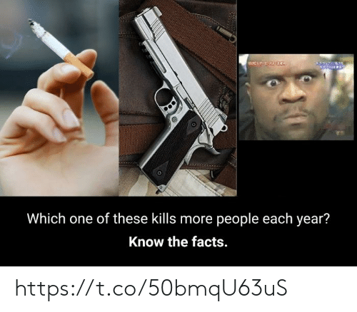 Each Year: Which one of these kills more people each year?  Know the facts. https://t.co/50bmqU63uS