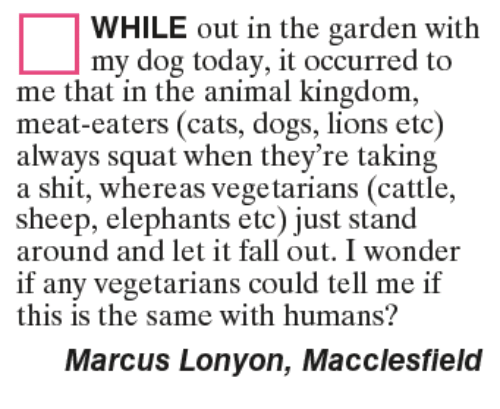 Cats, Dogs, and Fall: WHILE out in the garden with  my dog today, it occurred to  me that in the animal kingdom,  meat-eaters (cats, dogs, lions etc)  always squat when they're taking  a shit, whereas vegetarians (cattle,  sheep, elephants etc) just stand  sheep, elephanarian (cattle,  around and let it fall out. I wonder  if any vegetarians could tell me if  this is the same with humans?  Marcus Lonyon, Macclesfield