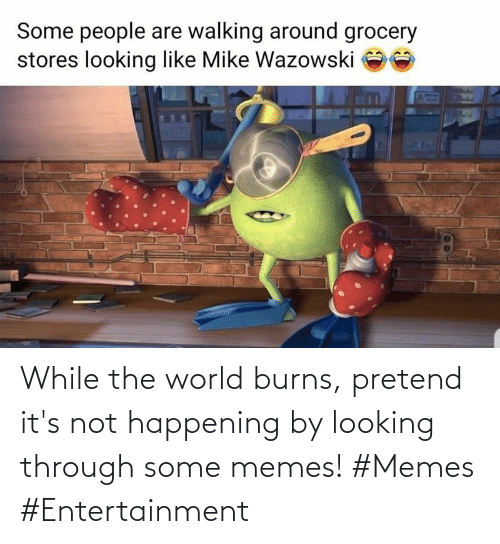 Some Memes: While the world burns, pretend it's not happening by looking through some memes! #Memes #Entertainment