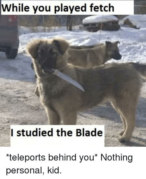 Blade, Memes, and 🤖: While you played fetch  Istudied the Blade *teleports behind you* Nothing personal, kid.