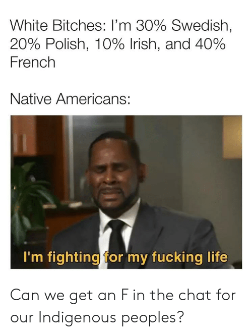 Fucking, Irish, and Life: White Bitches: I'm 30% Swedish,  20% Polish, 10% Irish, and 40%  French  Native Americans:  I'm fighting for my fucking life Can we get an F in the chat for our Indigenous peoples?