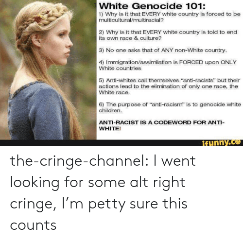 """Whites: White Genocide 101:  1) Why is it that EVERY white country is forced to be  multicultural/multiracial?  2) Why is it that EVERY white country is told to end  its own race & culture?  3) No one asks that of ANY non-White country.  4) Immigration/assimilation is FORCED upon ONLY  White countries  5) Anti-whites call themselves """"anti-racists"""" but their  actions lead to the elimination of only one race, the  White race.  6) The purpose of """"anti-racism"""" is to genocide white  children.  ANTI-RACIST IS A CODEWORD FOR ANTI-  WHITE!  ifynny.co the-cringe-channel:  I went looking for some alt right cringe, I'm petty sure this counts"""