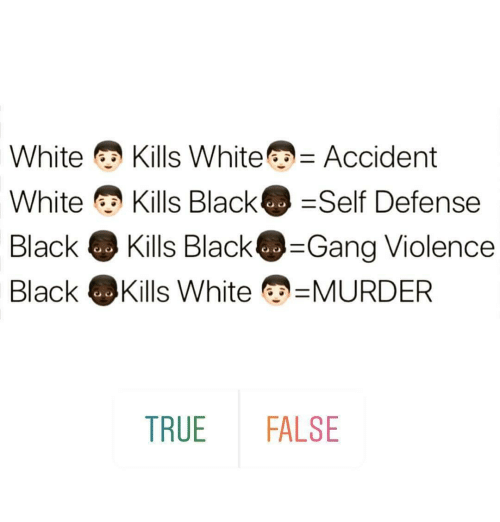 Memes, True, and Gang: White Kills White -Accident  White Kills Black Self Defense  Black Kills Black@-Gang Violence  Black·Kills White MURDER  TRUE FALSE