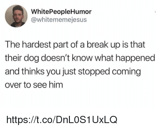 Memes, Break, and Break Up: WhitePeopleHumor  @whitememejesus  The hardest part of a break up is that  their dog doesn't know what happened  and thinks you just stopped coming  over to see him https://t.co/DnL0S1UxLQ