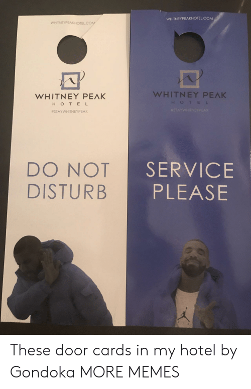 Dank, Memes, and Target: WHITNEYPEAKHOTEL.COM  WHITNEYPEAKHOTEL CON  WHITNEY PEAK  HOTEL  WHITNEY PEAK  #STAYVVHITNEYPEAK  DO NOT  DISTURB  SERVICE  PLEASE These door cards in my hotel by Gondoka MORE MEMES