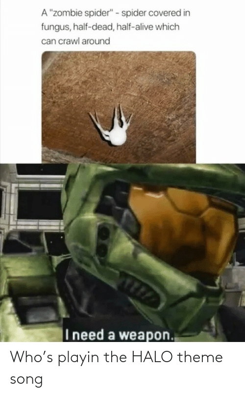 Halo: Who's playin the HALO theme song