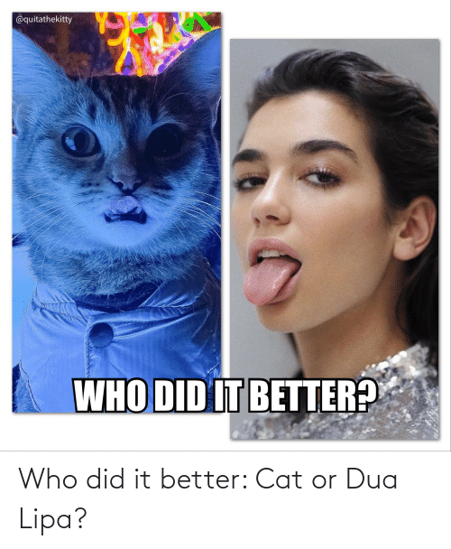 Reddit, Cat, and Who: Who did it better: Cat or Dua Lipa?