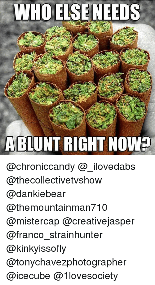 Memes, 🤖, and Who: WHO ELSENEEDS  ABLUNT RIGHT NOW? @chroniccandy @_ilovedabs @thecollectivetvshow @dankiebear @themountainman710 @mistercap @creativejasper @franco_strainhunter @kinkyissofly @tonychavezphotographer @icecube @1lovesociety