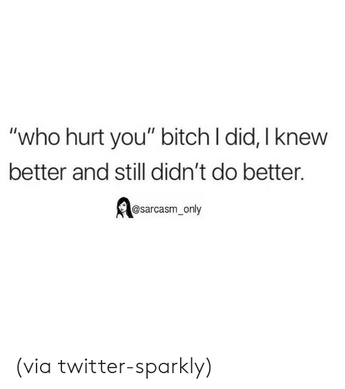 "Bitch, Funny, and Memes: ""who hurt you"" bitch l did, I knew  better and still didn't do better.  @sarcasm_only (via twitter-sparkly)"