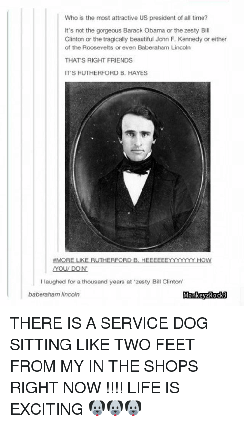 how you doin: Who is the most attractive US president of all time?  It's not the gorgeous Barack Obama or the zesty Bill  Clinton or the tragically beautiful John F. Kennedy or either  of the Roosevelts or even Baberaham Lincoln  THATS RIGHT FRIENDS  IT'S RUTHERFORD B. HAYES  MORE LIKE RUTHERFORD B, HEEEEEEYYYYYY HOW  YOU/ DOIN'  I laughed for a thousand years at 'zesty Bill Clinton  baberaham lincoln  MonkeyzRocks THERE IS A SERVICE DOG SITTING LIKE TWO FEET FROM MY IN THE SHOPS RIGHT NOW !!!! LIFE IS EXCITING 🐶🐶🐶